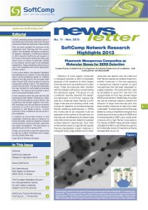 SoftComp Newsletter Issue No 11, published December 2013 (pdf, 1,9 MB)