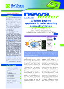 SoftComp Newsletter Issue No 8, published December 2010 (pdf, 1,3 MB)