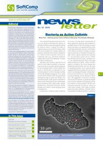 SoftComp Newsletter Issue No 12, published 2014 (pdf, 0,9 MB)